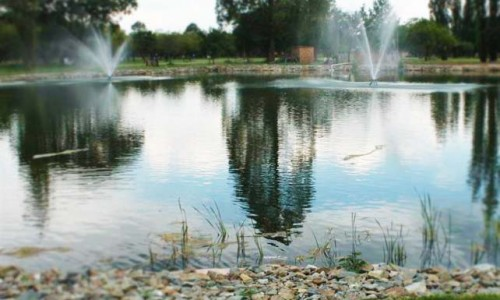 GEORGE SUTTER DUCK POND, SELECTION PARK, SPRINGS